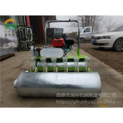 四轮车牵引蔬菜精播机 小颗粒种子专用条播机 1-6行多功能精量播种机