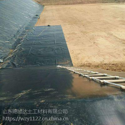 辽宁化工污水沉淀池HDPE防渗膜每平方米价格