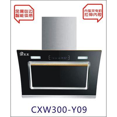 新疆油烟机大量批发知名厨卫电器品牌高性价比特价中式油烟机厂家