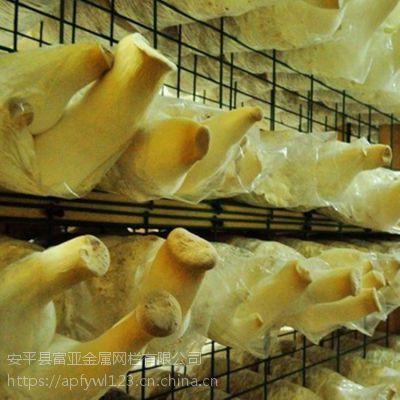 浸塑蘑菇网片,浸塑网片建筑用蘑菇生产厂家