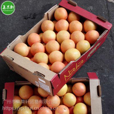 电商专供新鲜水果货源批发Naba犀牛牌进口红宝石红心西柚40头17KG