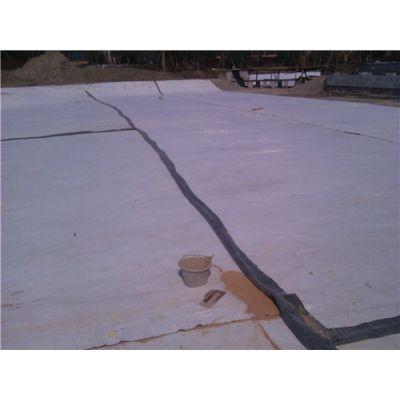 天热钠基膨润土防水毯规格-天热钠基膨润土防水毯-唐能(查看)