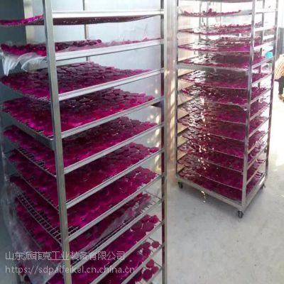 火龙果烘干机 水果片空气能热泵干燥设备