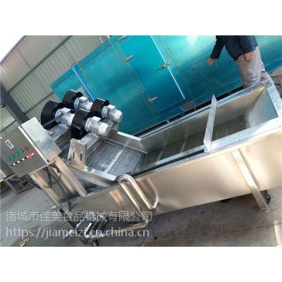广西柿饼气泡清洗设备厂家 佳美可根据客户要求加风机 清洗风干一体机设备