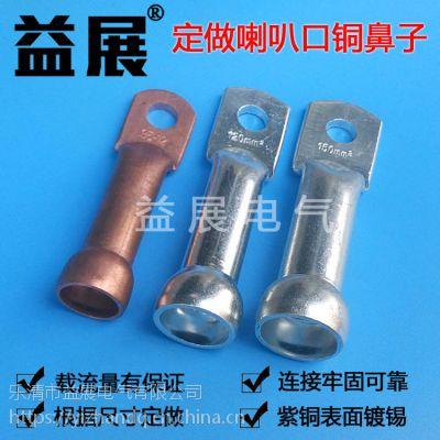 专业定做紫铜新能源汽车线耳线鼻子轨道交通设备铜端子