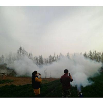 大型弥雾机 两用喷雾机 新款式烟雾机特价