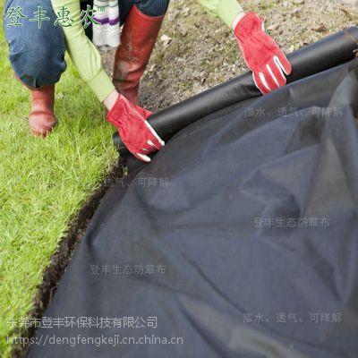 抗老化防草地布厂家直销,黑绿降温防草布