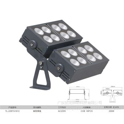 拓龙照明大功率200W户外COB足瓦投射灯防水投光灯压铸铝防炫光私模定制厂家