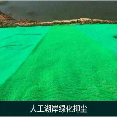 厂家直销建筑工地绿色防尘布 针刺涤纶无纺土工布 绿化环保护坡用