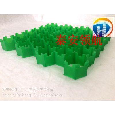深圳5公分植草格-塑料植草格厂家欢迎您咨询