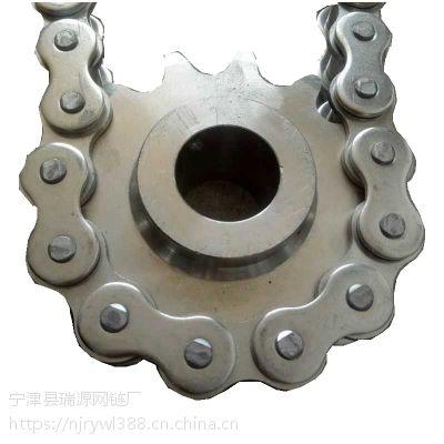 供应各种行业链条 滚珠直径22.28 节距38.1 材质 ;不锈钢和碳钢 瑞源供应