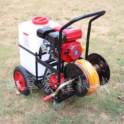 手推汽油高压打药机 果树高压喷雾器厂家供应自走式果园打药机