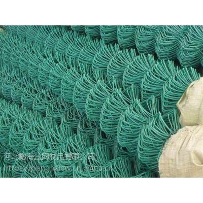 球场护栏网,包塑铁线球场网生产厂家哪家好