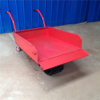 田埂用移动灵活履带车 燃油动力的农用推车 奔力LD-1