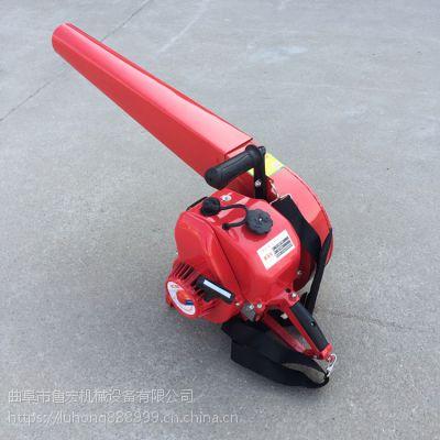 厂家直销吹雪机 大功率背负式汽油吹风机 大风力灭火机