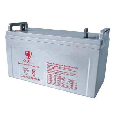 金武士蓄电池PW17-12厂家