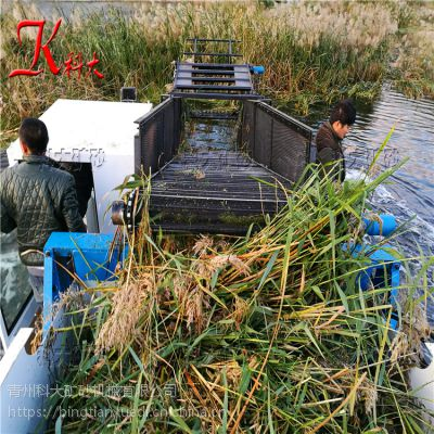 河道水花生打捞船 收集浮萍清理垃圾设备