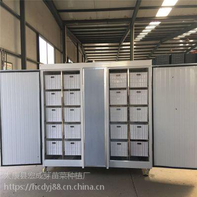 河南太康宏成牌全自动豆芽机厂家直销