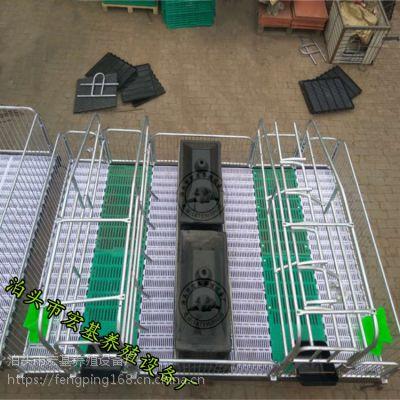 广西养猪设备生产厂家出售母猪产床双体高培产仔栏