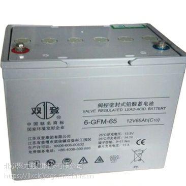 双登12v65ah电池电瓶 6-GFM-65 阀控式铅酸蓄电池