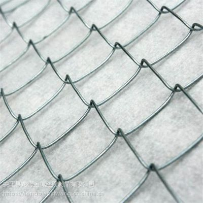 绿色勾花网 室外篮球场围网 水库围栏网