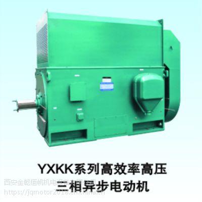 供应优质北京东方华盛高压三相异步电动机YKK5003-2 10KV 800KW IP44