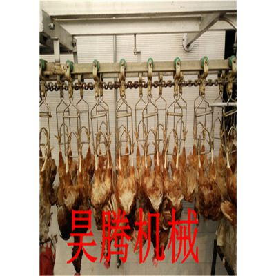 杀鸡流水线设备制造专业生产厂家