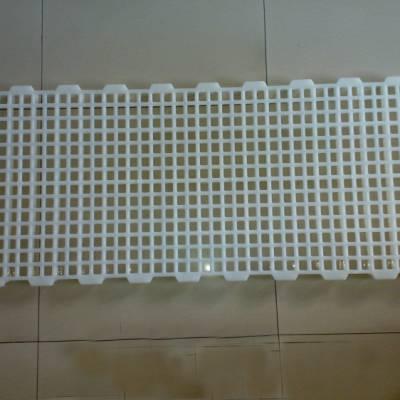 鸡鸭鹅用塑料漏粪地板鸭用塑胶地板厂家鹅漏粪板价格