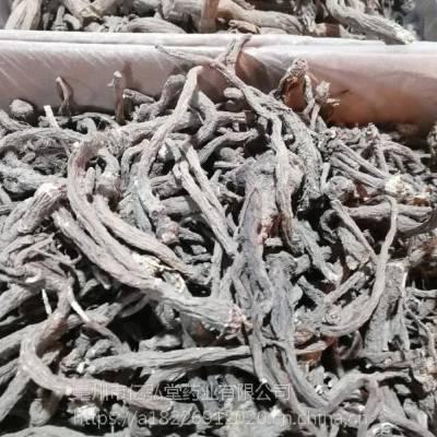 蒲公英根泡茶主治功效 蒲公英茶根哪里购买便宜多少钱一公斤