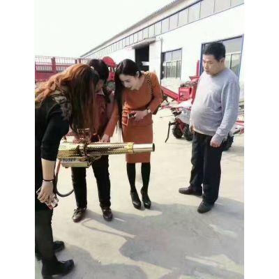 炫青春 享速度新款打药神器 农用弥雾机 汽油式180k烟雾机厂家