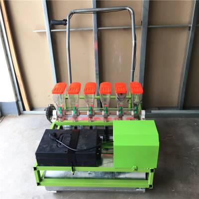 技术含量高蔬菜播种机 免间苗省人工菜籽播种机 专业生产蔬菜种植机械