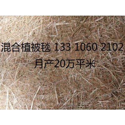 生态植草毯 边坡绿化植草毯 椰丝毯 赣州矿山绿化椰丝毯