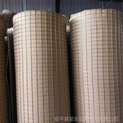 呈吉厂家批发热镀锌电焊网,养殖钢丝网,防护铁丝网,防鼠养水貂