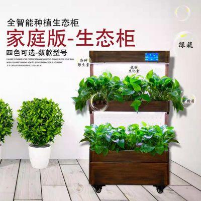 生态种植净化柜室内 办公室净化教学研习种植机智能种菜机