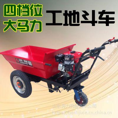 坡地运输工具 工地三轮机动车 奔力FD-MF1