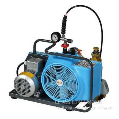 德国宝华BAUER100-TE空气呼吸器专用充气泵压缩机