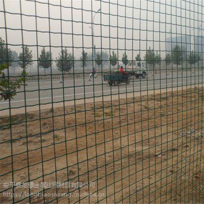 养鸡铁丝围栏网 果园防护网 散养鸡绿网子