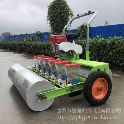 小粒播种机 多功能手推式蔬菜播种机 汽油电动中药材精播机鲁强机械