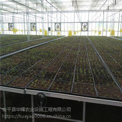 温室大棚移动苗床系统A丹东的售后保养维护