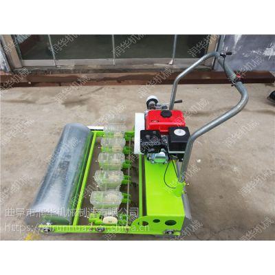 汽油多行蔬菜播种机 单粒白菜韭菜播种机 大棚香菜点播机