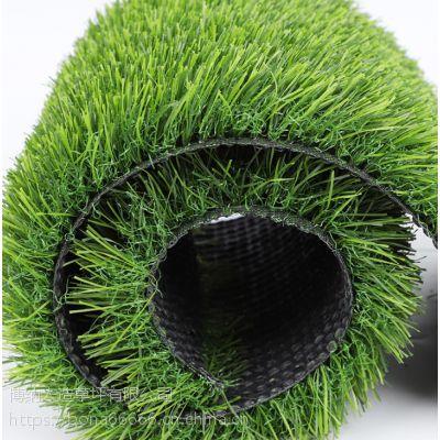 安徽省淮南市人工草坪人造草坪幼儿园免费拿样