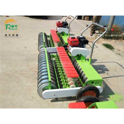 一次一粒的蔬菜种植机 小型播种青菜机 空心菜播种机