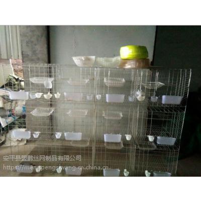 厂家生产新款广式鸽笼 4层立式16位鸽子笼 3层阶梯鸽笼加工
