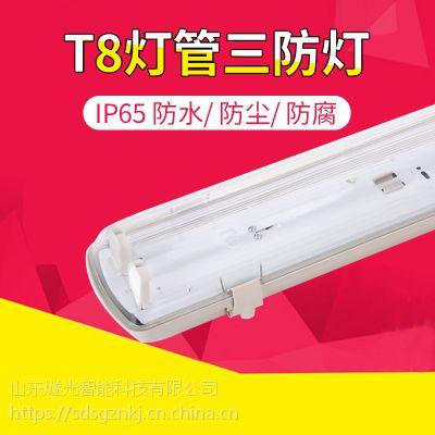 燧光防水防尘食品厂双管三防支架灯