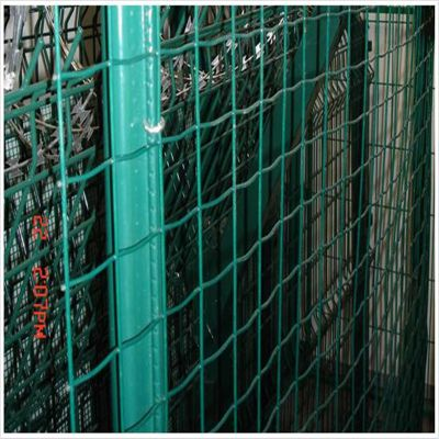 绿色围栏网 养鸡铁丝网 圈山铁丝网