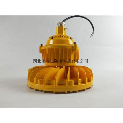 BLD560-30w圆形LED防爆照明灯生产厂家