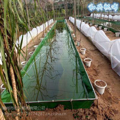 江苏室内户外环保养殖帆布水池养龙虾大水池