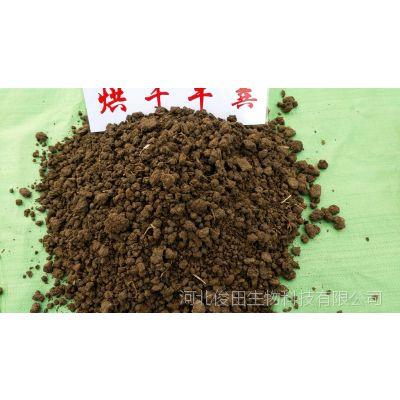 种果树用干羊粪会不会烧根 直接用干羊粪施肥会不会传染虫害
