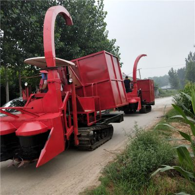 自走式履带式玉米秸秆收割青储机 双转盘割台青贮机厂家