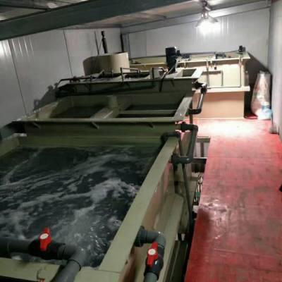 浙江污水处理设备有限公司/制革废水处理设备直销/小型污水处理设备